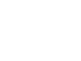 Estrella Logo mono center